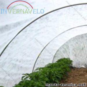 Micro túnel cubierto por manta térmica invernavelo